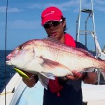 スロージギングでの真鯛(マダイ)の釣り方を学べる動画