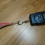 魚が掛かっても壊れないの?「改造餌木型ルアー」の強度を測定してみた!