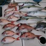 餌釣りを学ぶことでルアーフィッシングも上達する① 餌釣り船から分かる潮の流れ