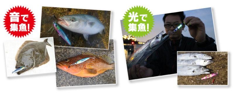 釣果画像[1]