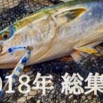 ジギング魂 2018年「総集編」人気の高かった記事10選