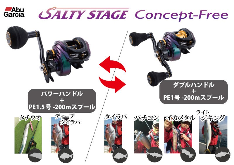 saltystyle_concept_free_popA4[1]