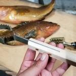 魚屋さんが考案!? エラい評価の高い「新案・ウロコ取り」を試してみた!