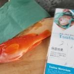 使って分かるその便利さ!釣った魚の熟成保存に便利な「つつめる君」を試してみた!